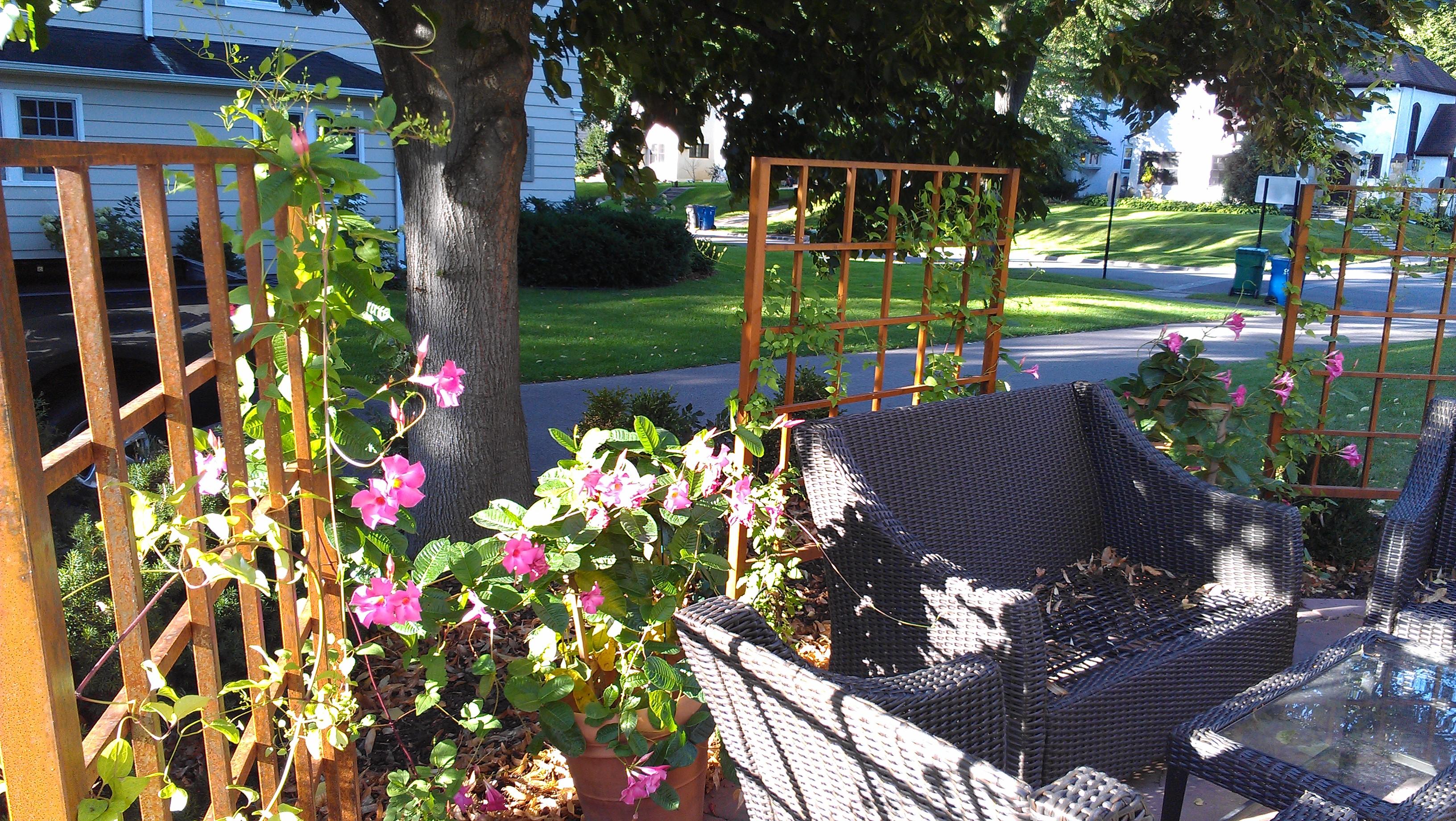 Custom designs beds and borders landscape design for Garden design internship