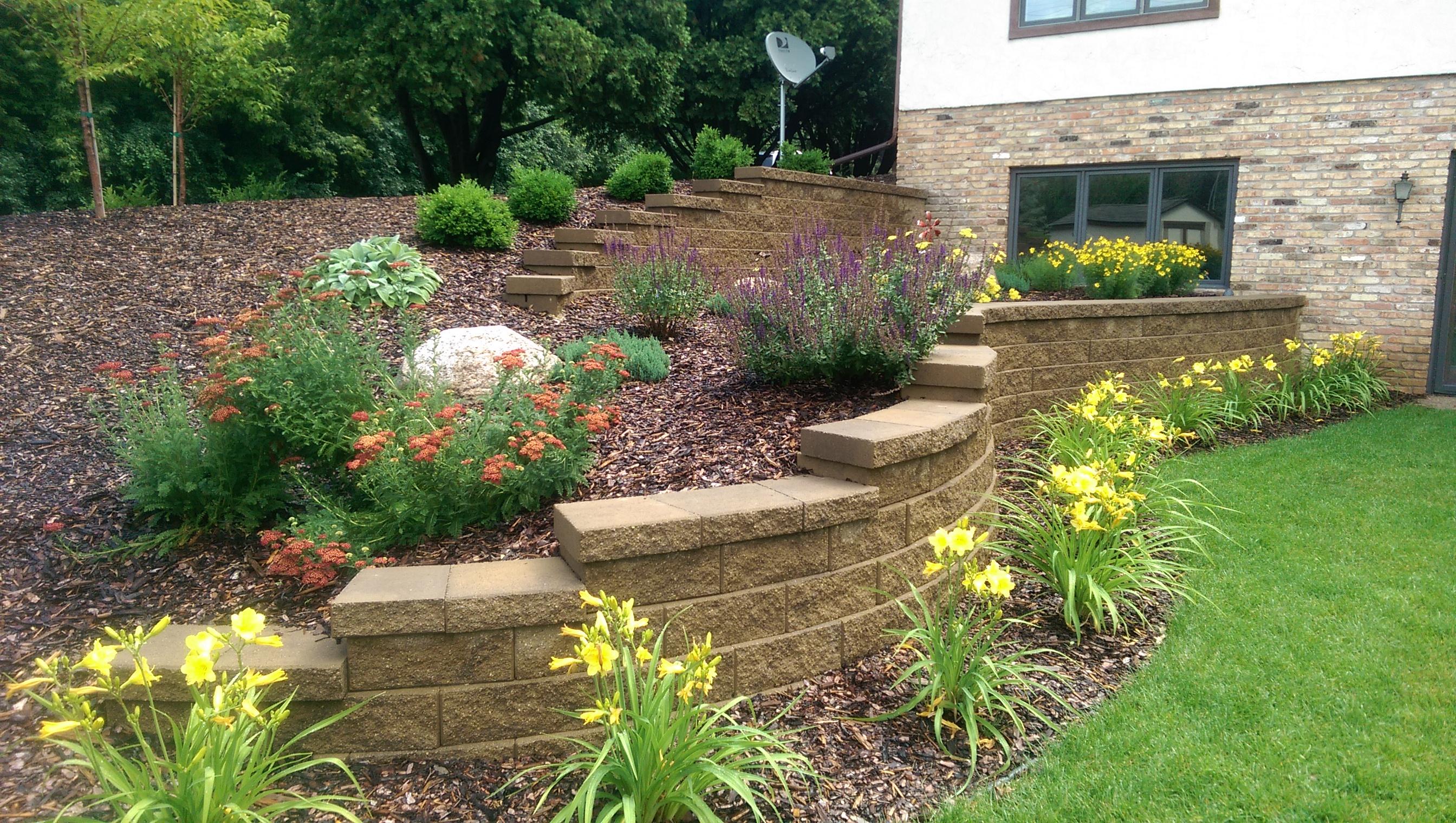 Landscape walls beds and borders landscape design for Garden design internship